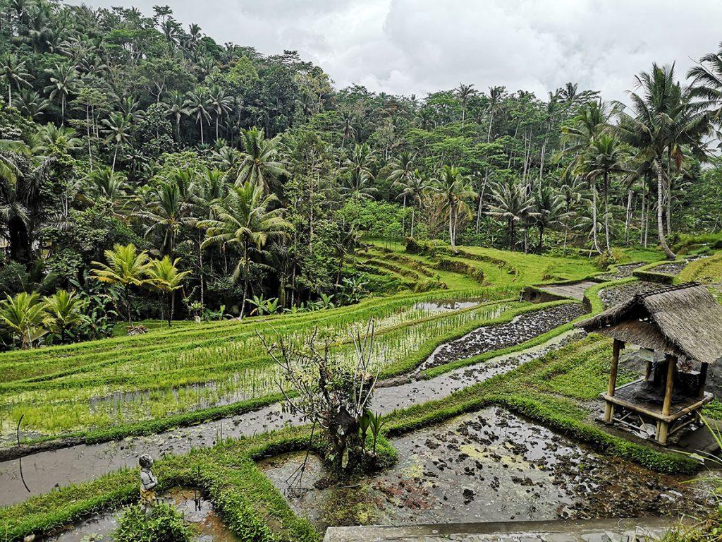 Pura Gunung Kawi - Bali - Indonesia